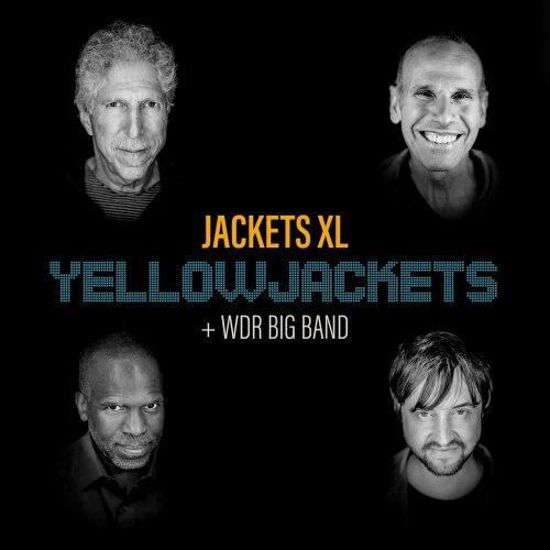 yellowjacketz Jackets XL DR big Band